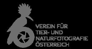 vtnoe_logo_wiki.png