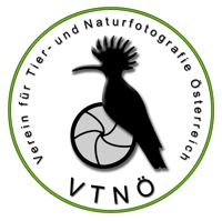 vtnoe_logo_wiki.jpg