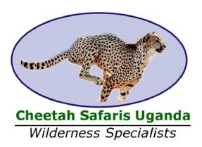 cheetah logo(2).jpg