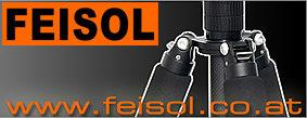 Feisol_Logo.jpg