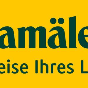 CHA-Logo+Slogan-2013_sRGB_gelb.jpg
