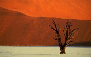 Josef-Niedermeier_Namibia-Dead Vlei im Sossusvlei-Nationalpark