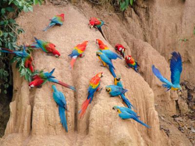 6 Wochen in Südamerika - Photo+Adventure