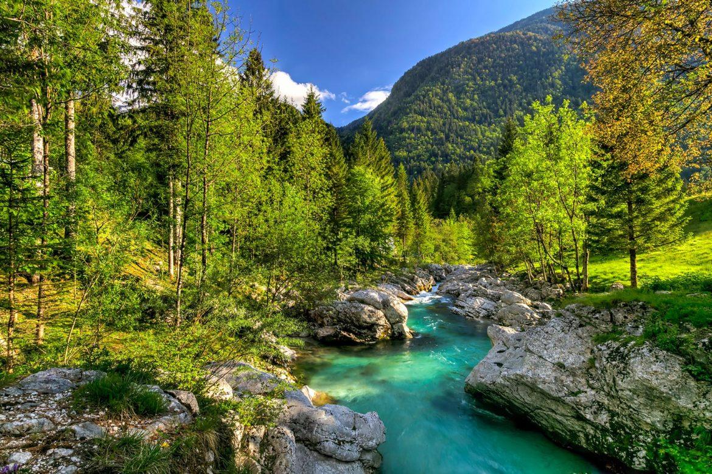 Slowenien: Im Reich von Steinbock, Gams und Auerhahn - Photo+Adventure