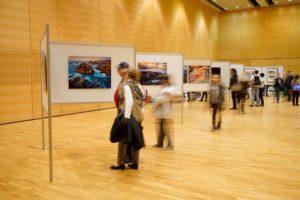 """Wir präsentieren: Die """"Catch your own gallery""""-Challenge - Photo+Adventure"""