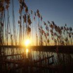 Wo sich Fuchs und Hase 'Gute Nacht' sagen - Photo+Adventure