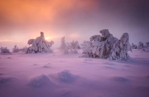 Die perfekte Winterlandschaft - Bastian Werner - Photo+Adventure