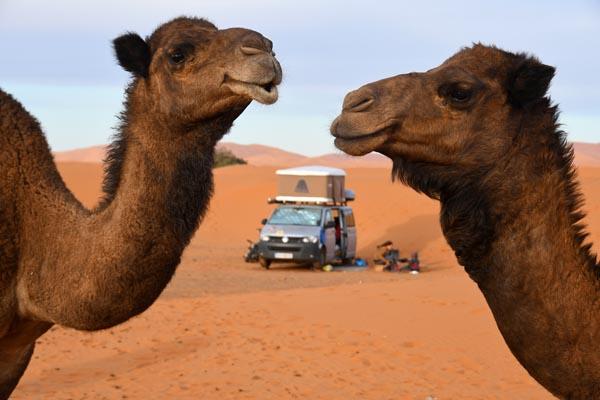 Wandergenuss Marokko - Philipp Schaudy / Weltweitwandern - Photo+Adventure